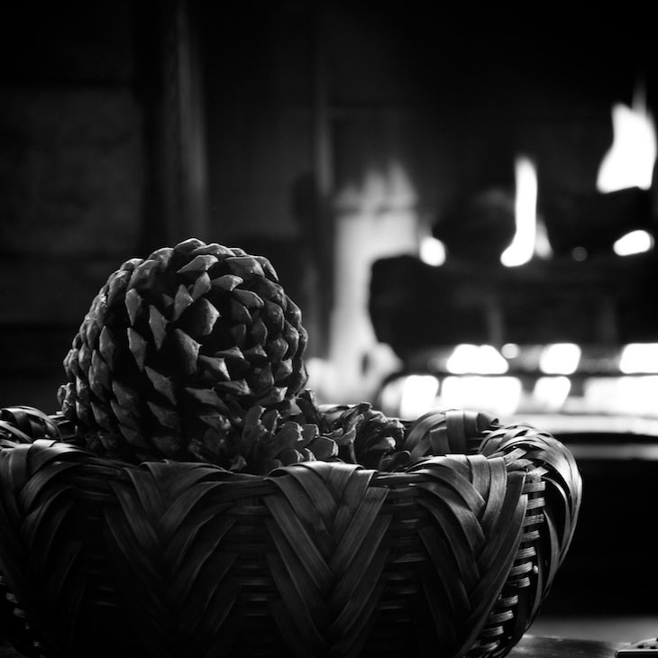 PINECONE FIRE